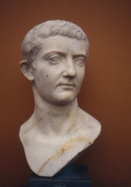 tiberius gracchus would be saviour or The novus homo: a study in politics and social mobility in ancient rome  become the princeps senatus, saviour of the roman republic (or so he claimed) and a.